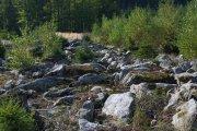 Kamenná řeka | Proud rulových balvanů| Přidal: IvSi, id:20171017131232572