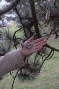 Strom byl ozdoben ii. | | Přidal: IvSi, id:20201218055218412