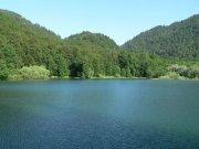 NP Biogradska gora | | Přidal: IvSi, id:20080114115928190