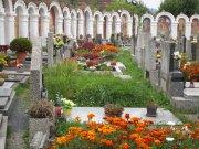 Albrechtice nad Vltavou   unikátní kapličkový hřbitov  Přidal: Drahos, id:20211011152610275