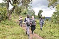 Gorilla trek | | Přidal: Wickie, id:20160623151755133