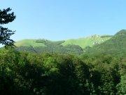 NP Biogradska gora | | Přidal: IvSi, id:20080114115929127