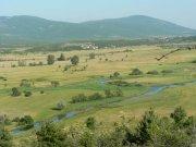 Republika Srpska Krajina | | Přidal: IvSi, id:20080114115756822