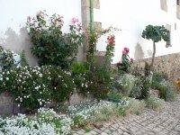 všude květiny | Montesinho| Přidal: IvSi, id:2012061813441239