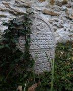 Židovský hřbitov   u Vodňan  Přidal: IvSi, id:20211002131039644