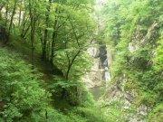 Škocjanska jama - po výlezu | | Přidal: IvSi, id:20080114120615803